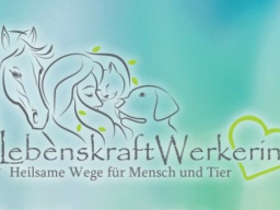 Webinar: Was kann Tierkommunikation?