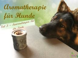 Webinar: Aromatherapie für Hunde Teil 3/4 - Anwendungen für die Seele