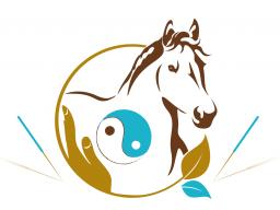 """Webinar: Infowebinar Ausbildung """"TCVM für Pferde - Advanced Praktiker"""""""