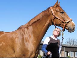 Webinar: Homöopathie für Stute und Fohlen