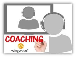 Webinar: Online-Coaching ... raus aus Sorgen, Hilflosigkeit und Zukunftsängsten mit wingwave®-Humanonline Einzel-Coaching