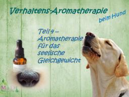 Webinar: Verhaltens-Aromatherapie für Hunde - Teil 4/4