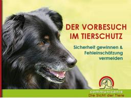 Webinar: Der Vorbesuch im Tierschutz