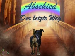 Webinar: Abschied - der letzte Weg