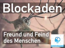Webinar: Blockaden im Gehirn: Freund und Feind eines jeden Menschen (02 - MS)