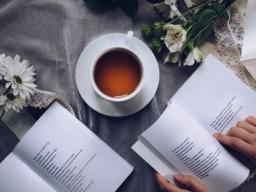 Webinar: Literatur-Spiegel, Brückenbildung grossartiger Literatur von grossen Literaten, Mystikern und Geisteswissenschaftlern