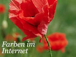 Webinar: Die richtigen Farben für Deine Website