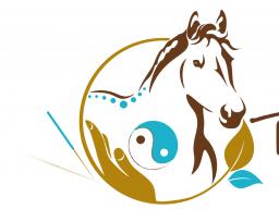 Block 6 - Osteopunktur für Pferde