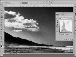 Webinar: Adobe Photoshop Intensiv Workshop