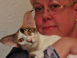 Webinar: Durchfall und Verstopfung bei der Katze