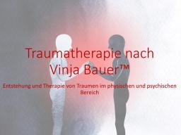 Webinar: Traumatherapie nach Vinja Bauer (TM) Modul 1