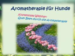 Webinar: Querbeet durch die Aromatherapie