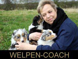 Webinar: Hunde Rückruf - warum klappt das nicht?