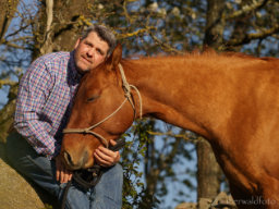 Webinar: Bernd Hackl: Videoanalyse und Fragerunde: Die Kommunikation mit deinem Pferd ist kein Geheimnis