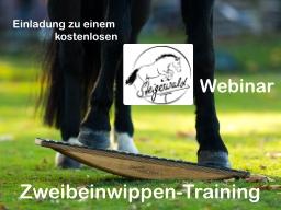 Webinar: Pferdewippen-Training: Zweibeinwippe
