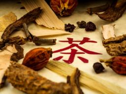 Webinar: Traditionelle Chinesische Arzneimitteltherapie für Tiere - Block 8