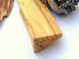 Webinar: Palo Santo - Räuchern und Rituale mit dem heiligen Holz aus Südamerika