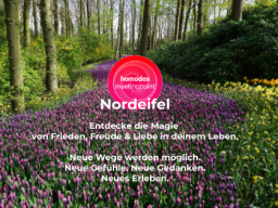 Webinar: homodea meetingpoint magig life - Gruppe