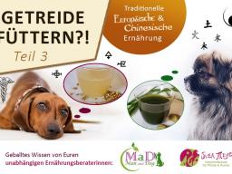 Webinar: Hunden Getreide füttern?! Teil 3/3