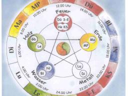 Webinar: Element Erde - das Schlüssel Element für eine gute Figur