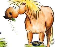 Webinar: Management vom Pferden mit EMS oder Insulinresistenz und Hufrehe
