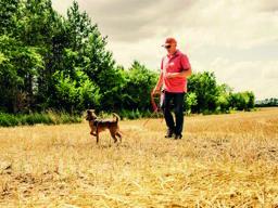 Webinar: Spaziergänge mit stark jagdlich motivierten Hunden entspannter gestalten.