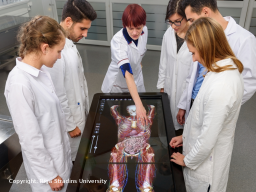 Webinar: Medizin international studieren: Studienmöglichkeiten in der EU