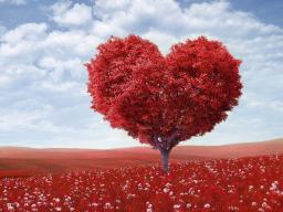 Webinar: Gruppenheilung: Liebeszyklus (5) - Vaterliebe