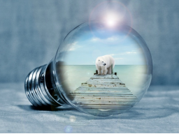 Webinar: Den Zeitgeist 2020 verstehen durch Inspiration, Intuition und Bewusstwerdung 5. Teil