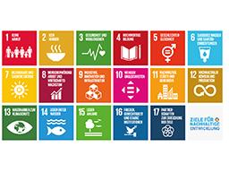 Webinar: Bibliotheken und Nachhaltigkeit - die 17 Ziele im Fokus der Bibliotheken weltweit