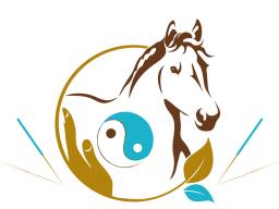 Block 6 - TCVM für Pferde - Advanced Praktiker