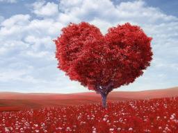 Webinar: Energieheilung: Liebeszyklus (2)