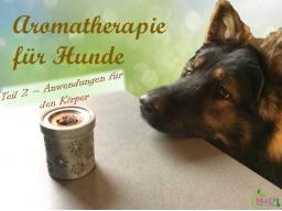 Webinar: Aromatherapie für Hunde  Teil 2/4 Anwendungen für den Körper